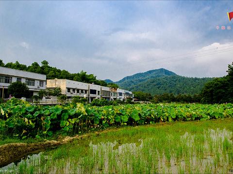 毛泽东纪念园旅游景点图片