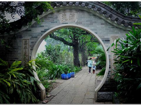 小洲村旅游景点图片