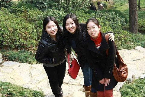 团城山公园旅游景点攻略图