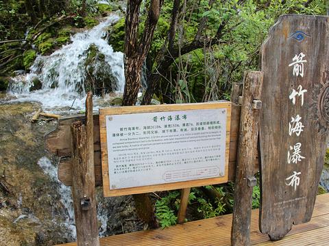 箭竹海旅游景点图片