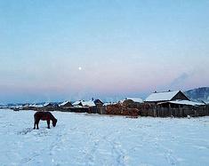 一路向北(哈尔滨——漠河——北红村)