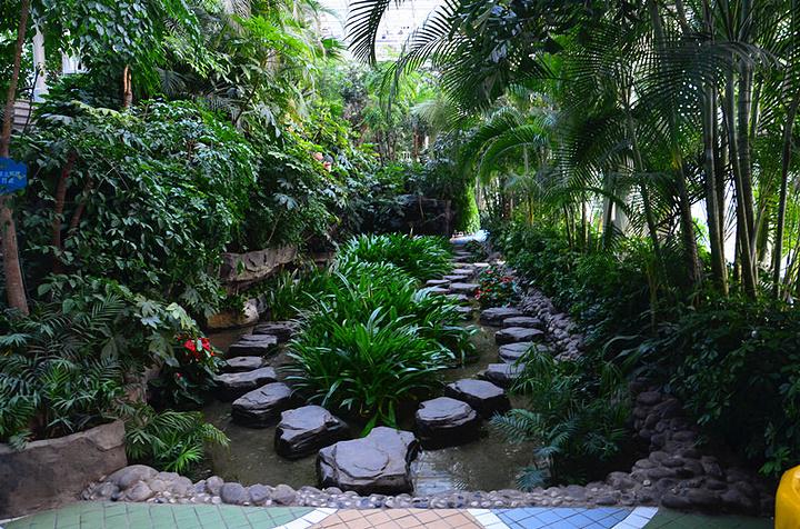 """""""石家庄空中花园是石家庄最具特色的景点之一了,很多来石家庄旅游的朋友我都会推荐他们来这里看看_联邦空中花园""""的评论图片"""