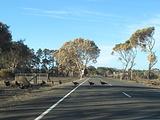 南澳大利亚州旅游景点攻略图片