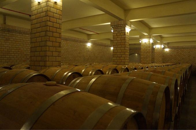 畅游葡萄酒庄图片