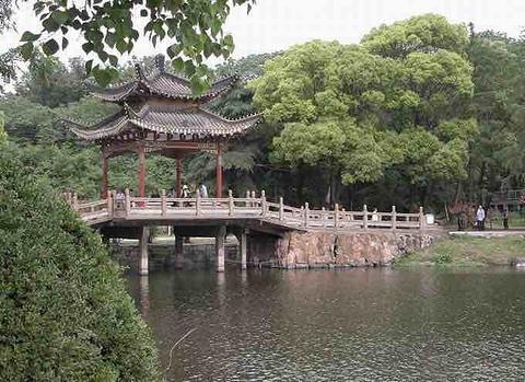 凤凰洲公园旅游景点攻略图