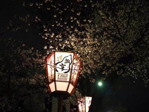 京都弥荣会馆日本传统艺能鉴赏旅游景点图片