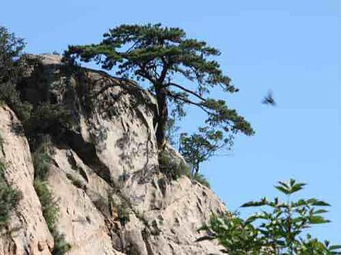 云蒙山旅游景点攻略图