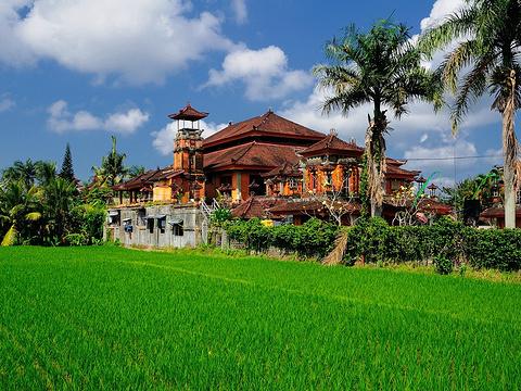 乌布旅游景点图片