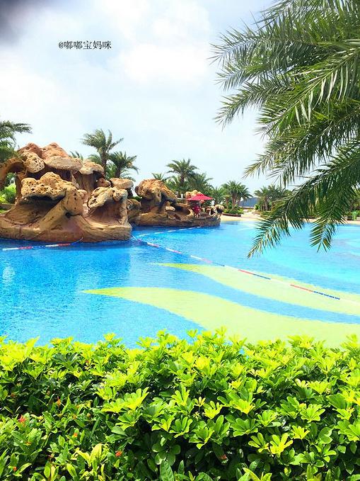 美丽的海豚池图片