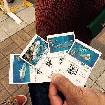 大阪海游馆旅游景点攻略图