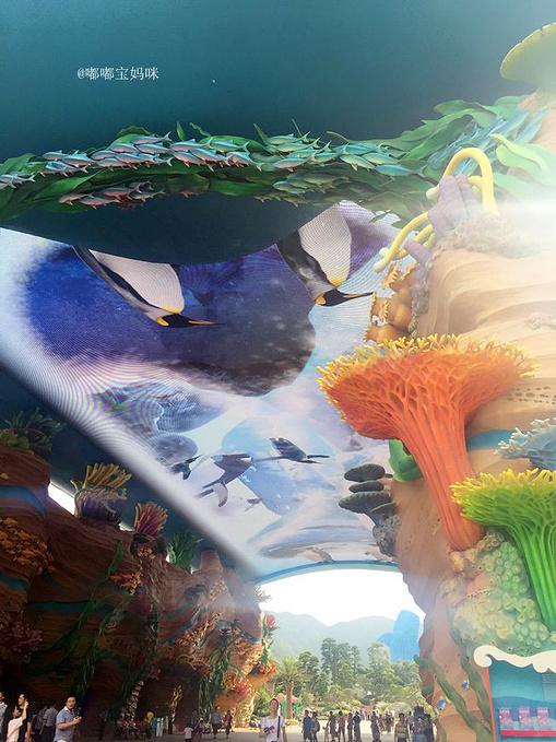 神奇海洋世界图片