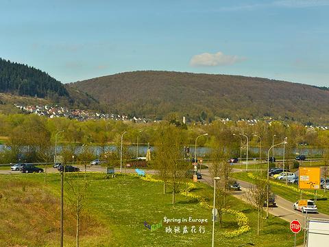 杜塞尔多夫市政厅旅游景点图片
