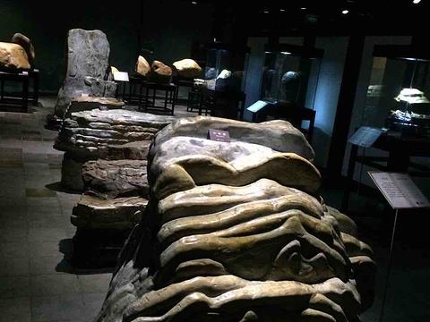 石头记矿物园旅游景点图片