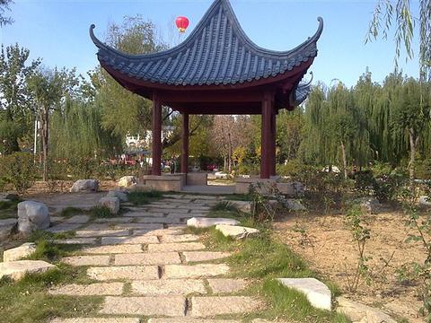 蒲湖公园旅游景点图片