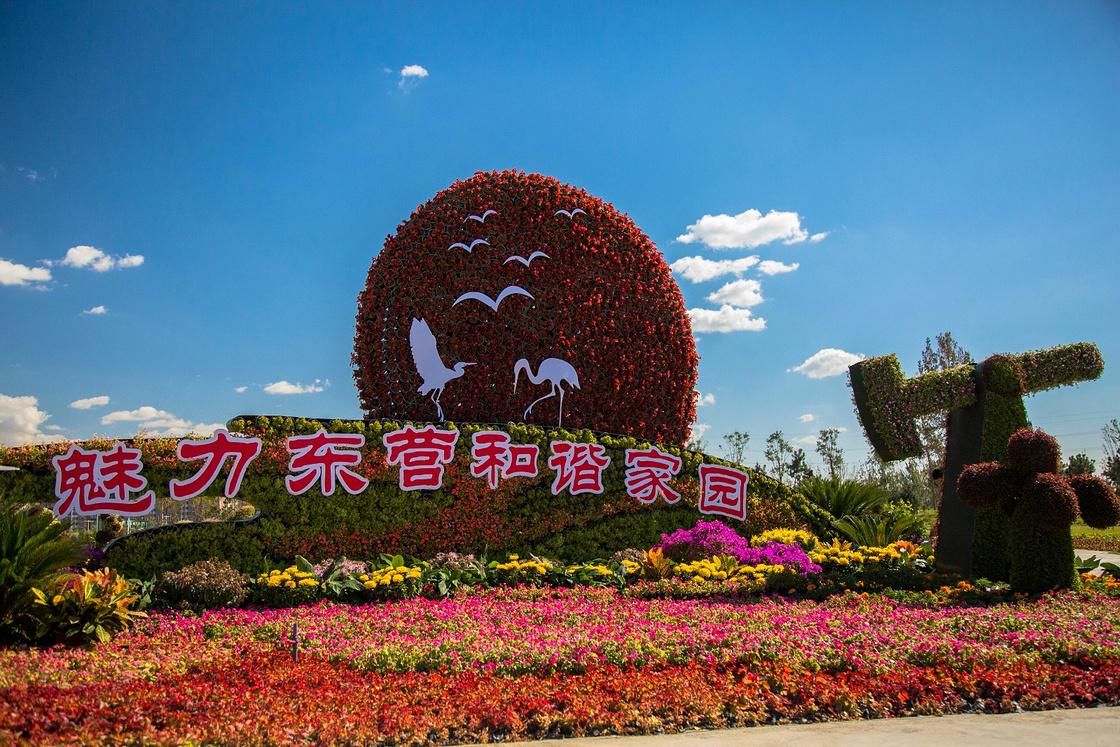 东营植物园风光