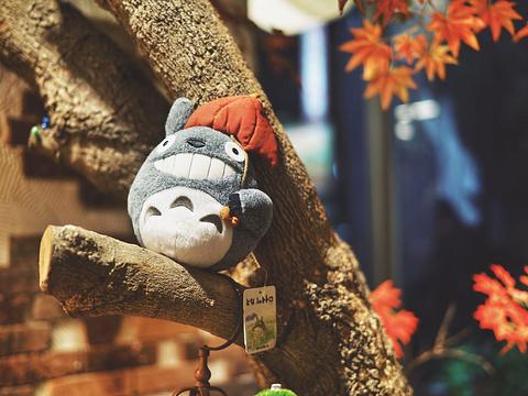东京杂货乐园旅游景点图片