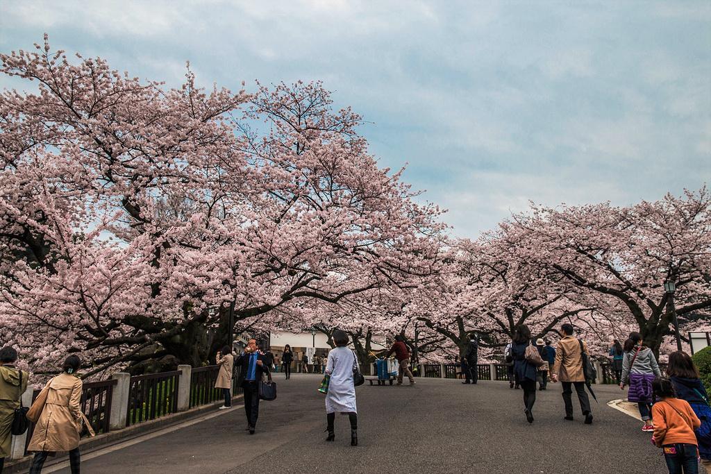 活在二次元的世界里 日本东京