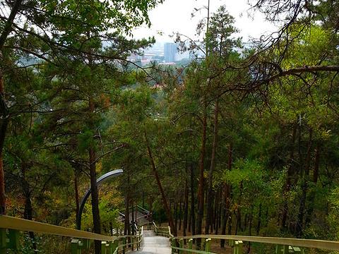 北山公园旅游景点图片