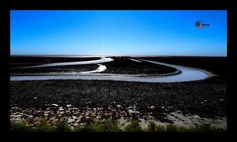 双台河口自然保护区旅游景点攻略图