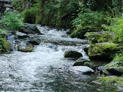 凤凰山国家森林公园旅游景点图片