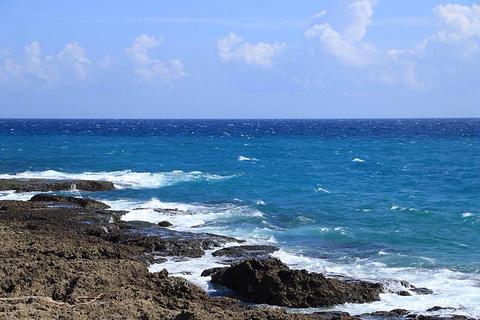 南湾的图片