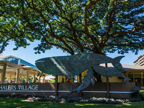 捕鲸村博物馆旅游景点图片