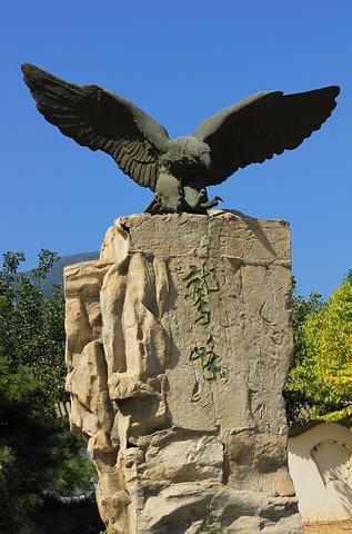 """""""从主峰回望岫玉亭,那里的地势相当开阔。大门处刻有鹫峰的石雕呼应了景区的名称_鹫峰森林公园""""的评论图片"""