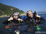 小丑鱼潜水