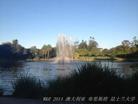 昆士兰科技大学的图片
