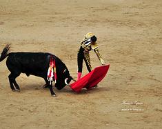 14天漫游热情的西班牙—高迪、斗牛、足球