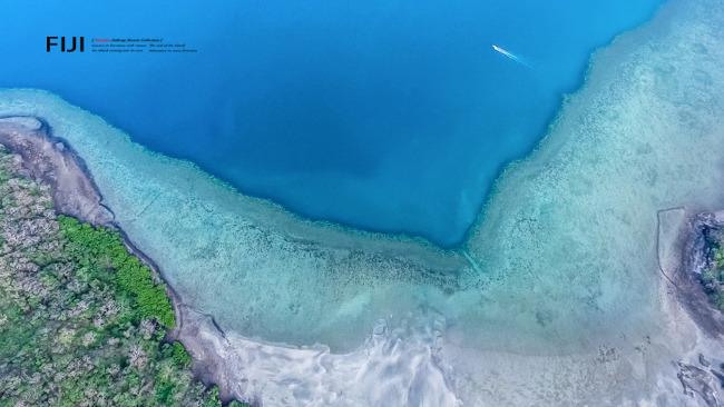 太平洋港图片