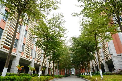 集美大学的图片