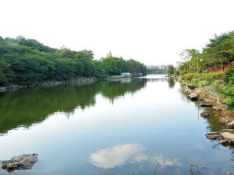天际岭国家森林公园旅游景点图片
