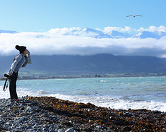 【暖暖记】新西兰南岛的自驾游