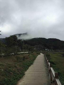 尖峰岭国家森林公园旅游景点攻略图