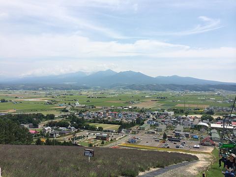 四季彩之丘旅游景点攻略图