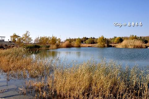 新疆盐湖景区