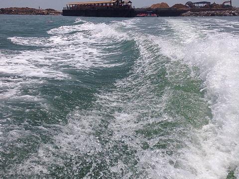 日照金沙滩浴场旅游景点图片