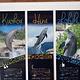 茉莉雅洲际海豚中心