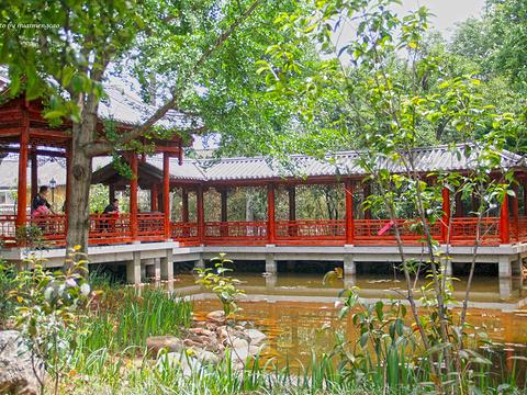 玉洱园旅游景点图片