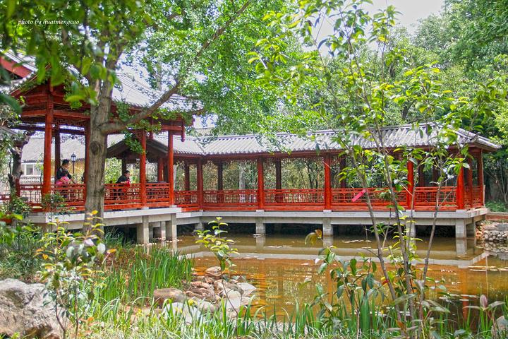 """""""其实它也是和其他的地方的公园一样的,一样有全民健身的设施,有早起晨练的人们,有小桥流水,有亭台..._玉洱园""""的评论图片"""