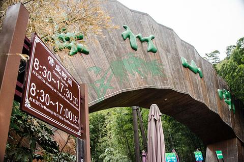 南山竹海旅游景点攻略图