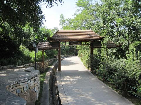 本溪动物园旅游景点攻略图