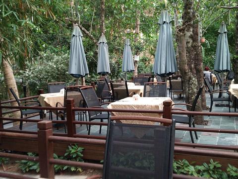 菠萝蜜苑西餐厅旅游景点图片