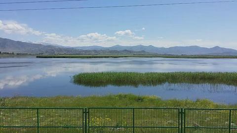 可可苏里湖旅游景点攻略图