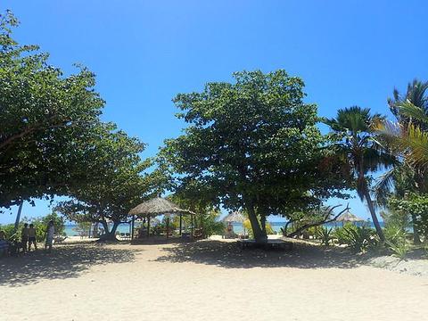 维提岛旅游图片