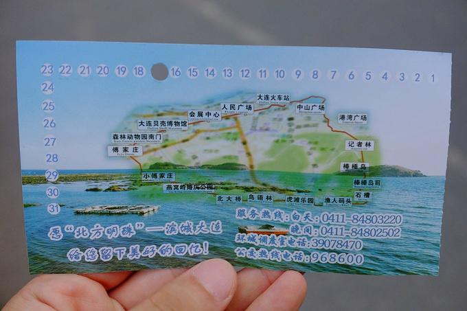 环线旅游巴士图片