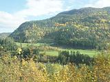 卑尔根旅游景点攻略图片