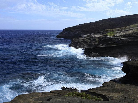 哈罗那喷潮口(Halona blow hole)旅游景点图片