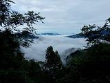 炎陵旅游景点攻略图片